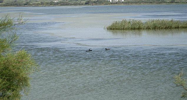 Kalantos Wetland