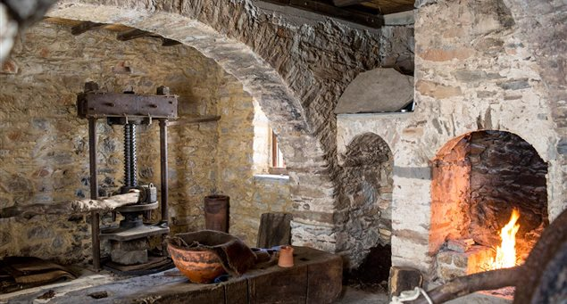 Naxos Must-Visit: The Olive Press