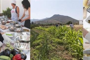 Μαθήματα μαγειρικής στο χωριό Γαλήνη