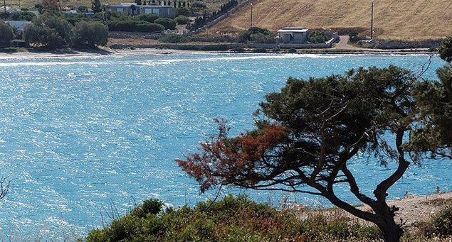 Παραλία Αλμυρός Σχοινούσα