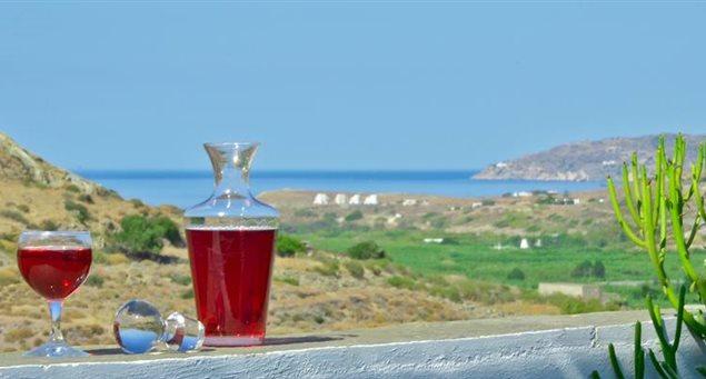 Naxos Filoxenia