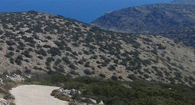 #7 - Agios Athanassios - Averou