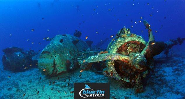 Blue Fin Divers Naxos Diving Centre