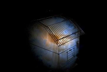 """Περιοδική εκθέση """"Κυκλαδικά Στιγμιότυπα"""" και εικαστική εγκατάσταση σύγχρονης τέχνης """"(l)imited souls"""" του Ιωάννη Μιχαλούδη στον Πύργο Crispi (Γλέζου) στη Χώρα Νάξου"""